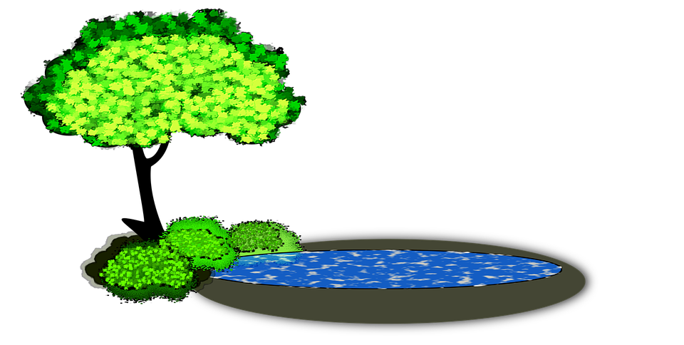 Pond clipart empty pond. Lily pad x dumielauxepices