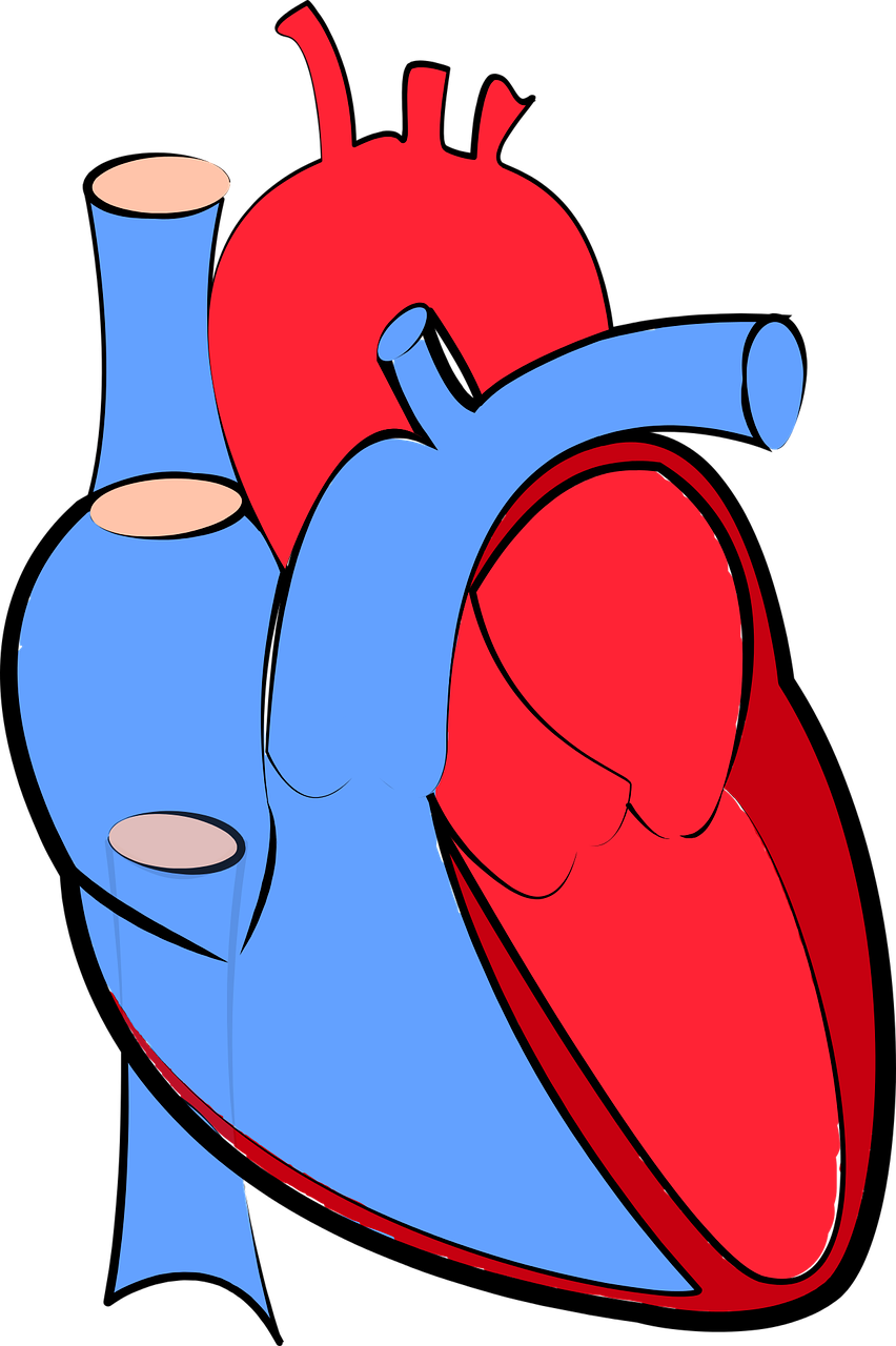 Pain clipart chest pain. History the medical textbook
