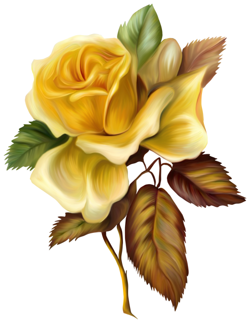 Painted flower png. Yellow rose picture clipart