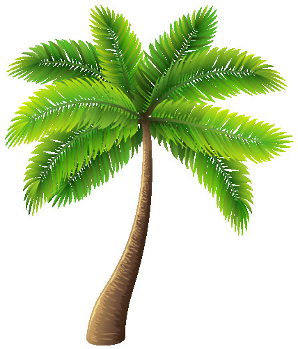 Palm clipart cool. Tree png clip art