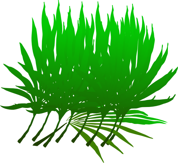 Palm clipart green branch. Sunday clip art at