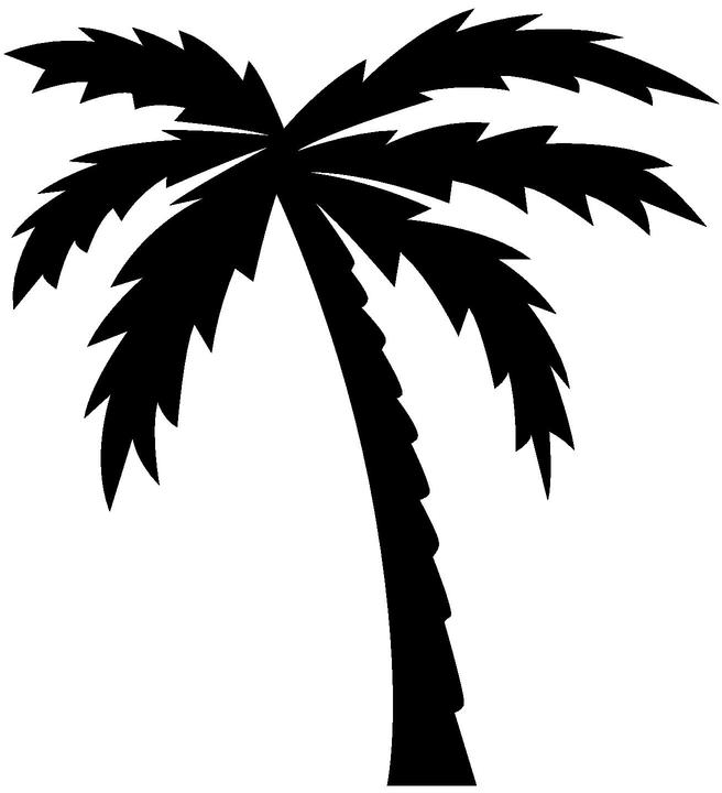 Palm clipart jpeg. Tree black and white