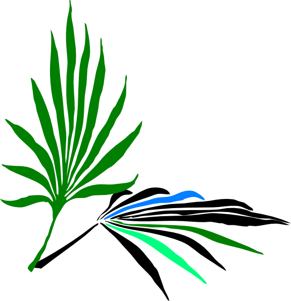 Palm clipart palm leaf. Leaves clip art at