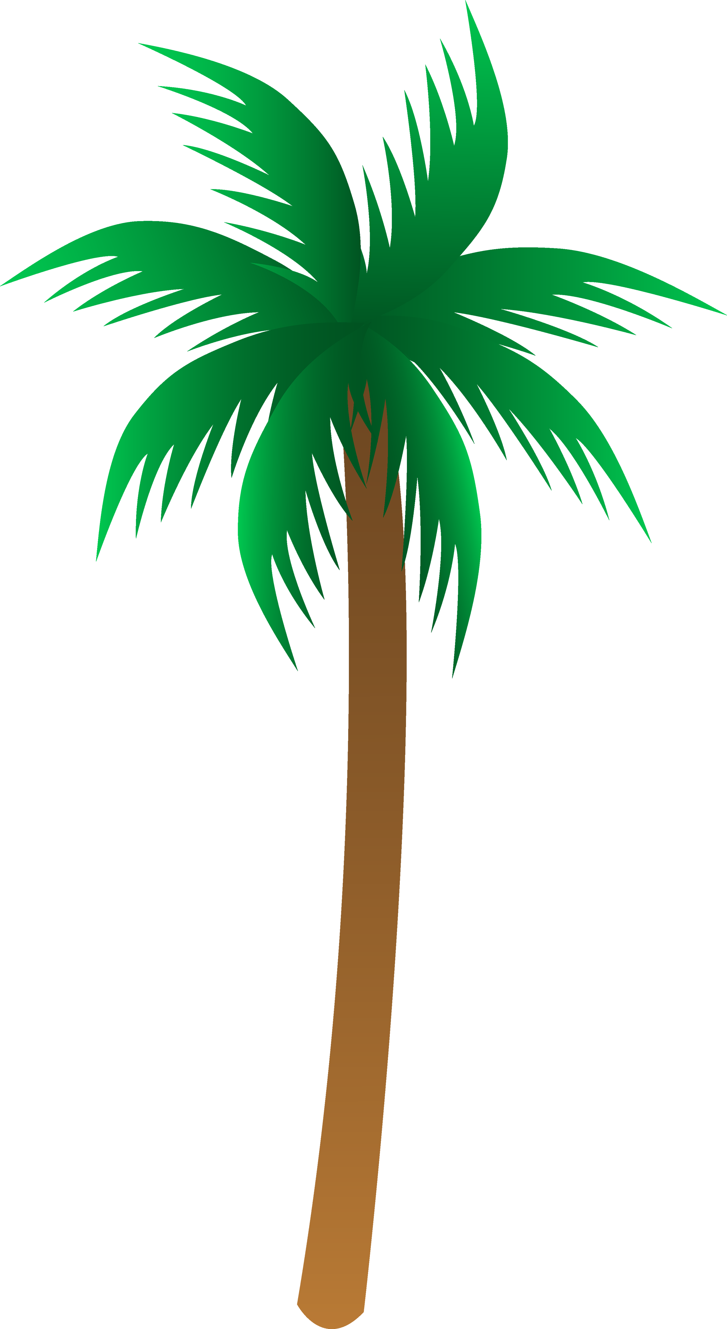 Palm clipart palm leaf. Tree png images download