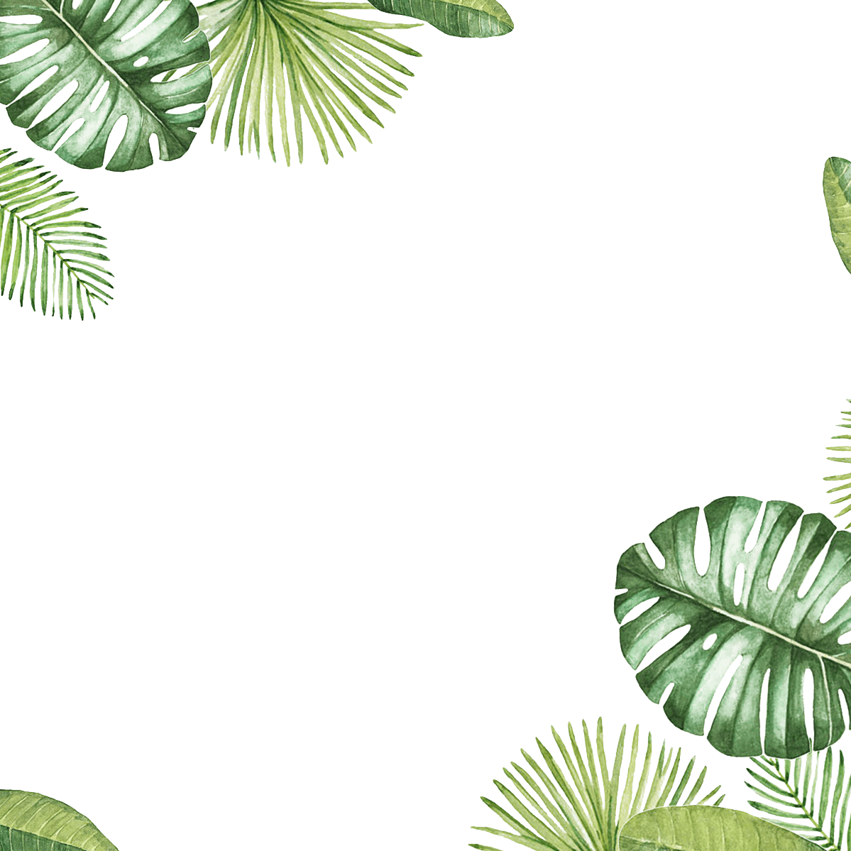 Palm leaf border png. Download transparent background image
