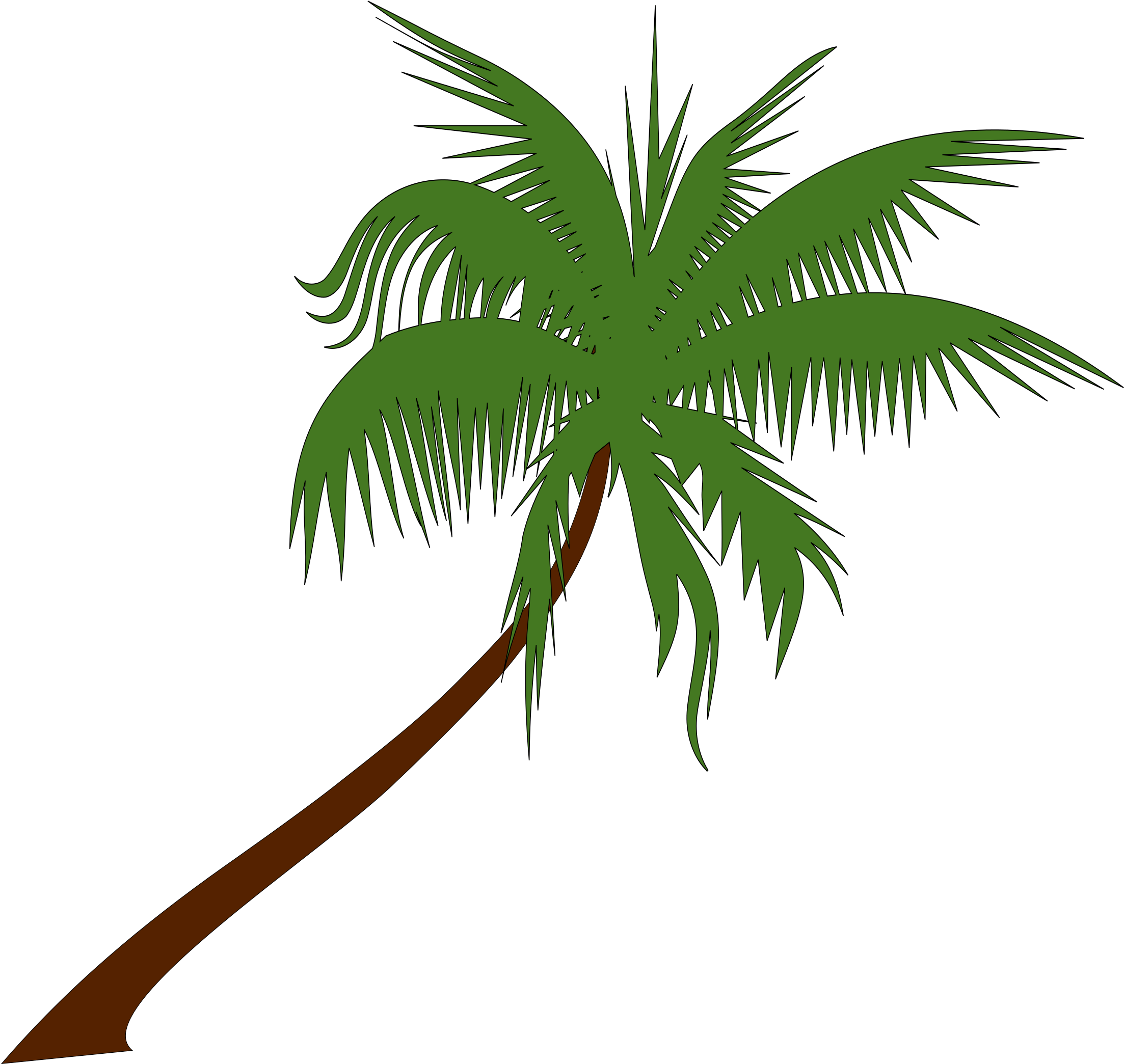 Palm leaf drawing png. Download tree at getdrawings