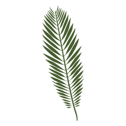 Palm leaf drawing png. Two tree silhouette transparent