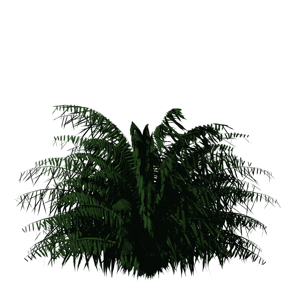 Palm leaf texture png. Greenhouse blender for architecture