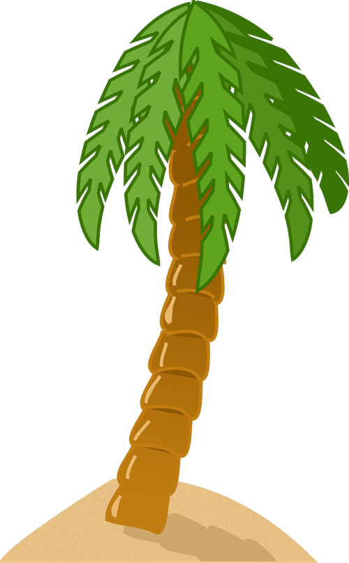 Palm leaves clip art png. Download island tree image