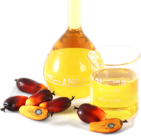 Palm oil png. Image