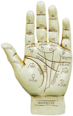 Palm reading png. Best services in california