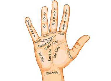 Palm reading png. Palmistry online in delhi