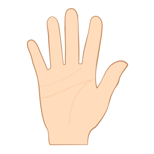 Palm reading png. Lines free palmistry meaning
