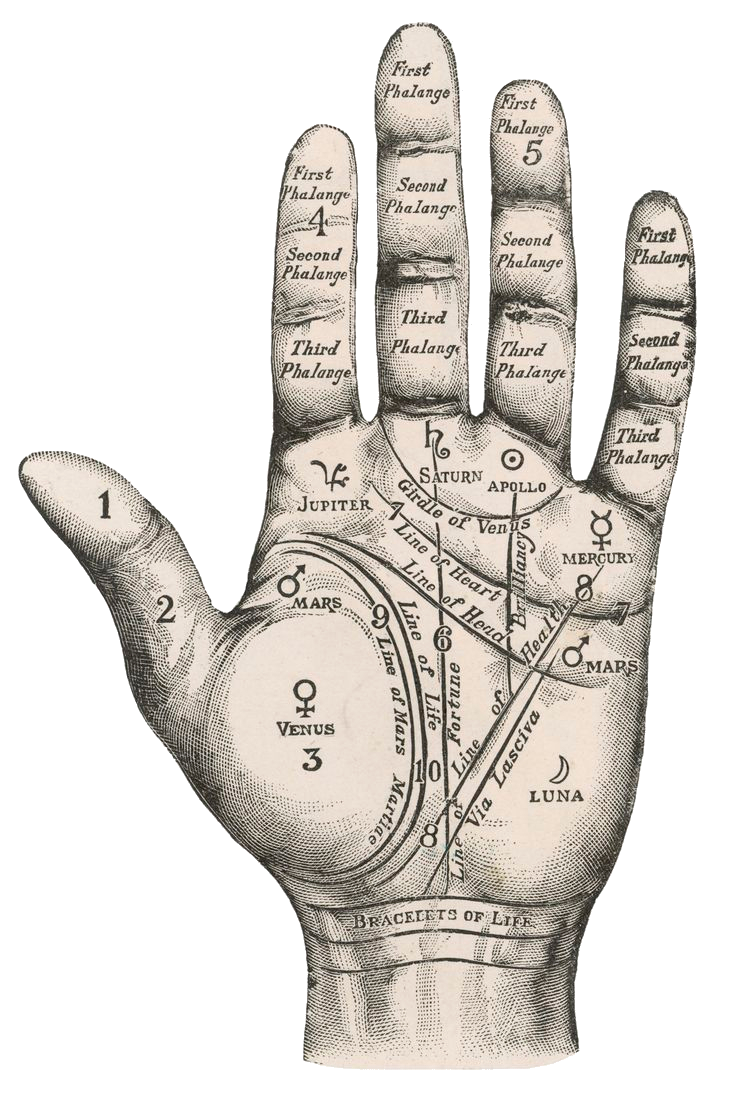 Palm reading png. The art of tarot