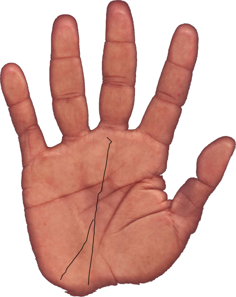 Palm reading png. By chado on deviantart