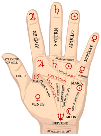 Palm reading png. Services lynnwood