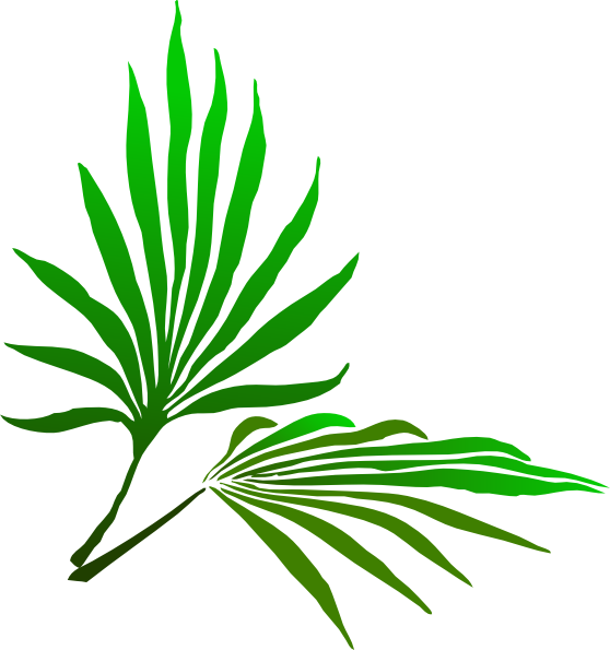 Palm sunday png. Branch clip art at