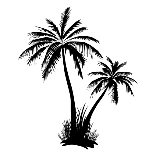 Palm tree black and white png. Silhouette at getdrawings com
