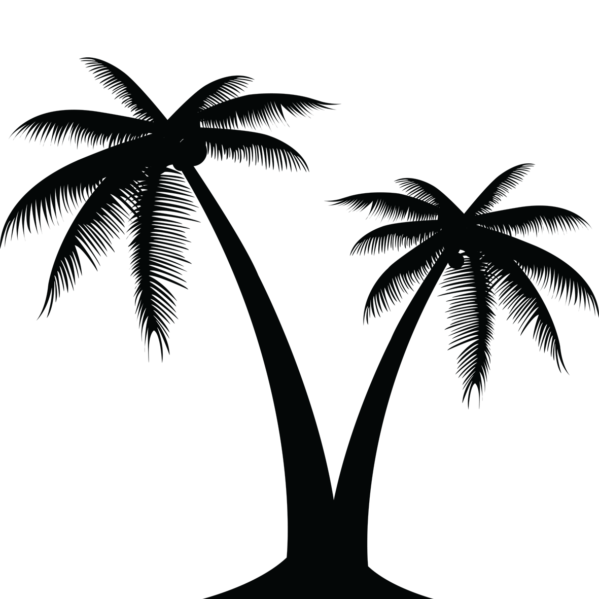 Palm leaf vector png. Tree silhouette at getdrawings