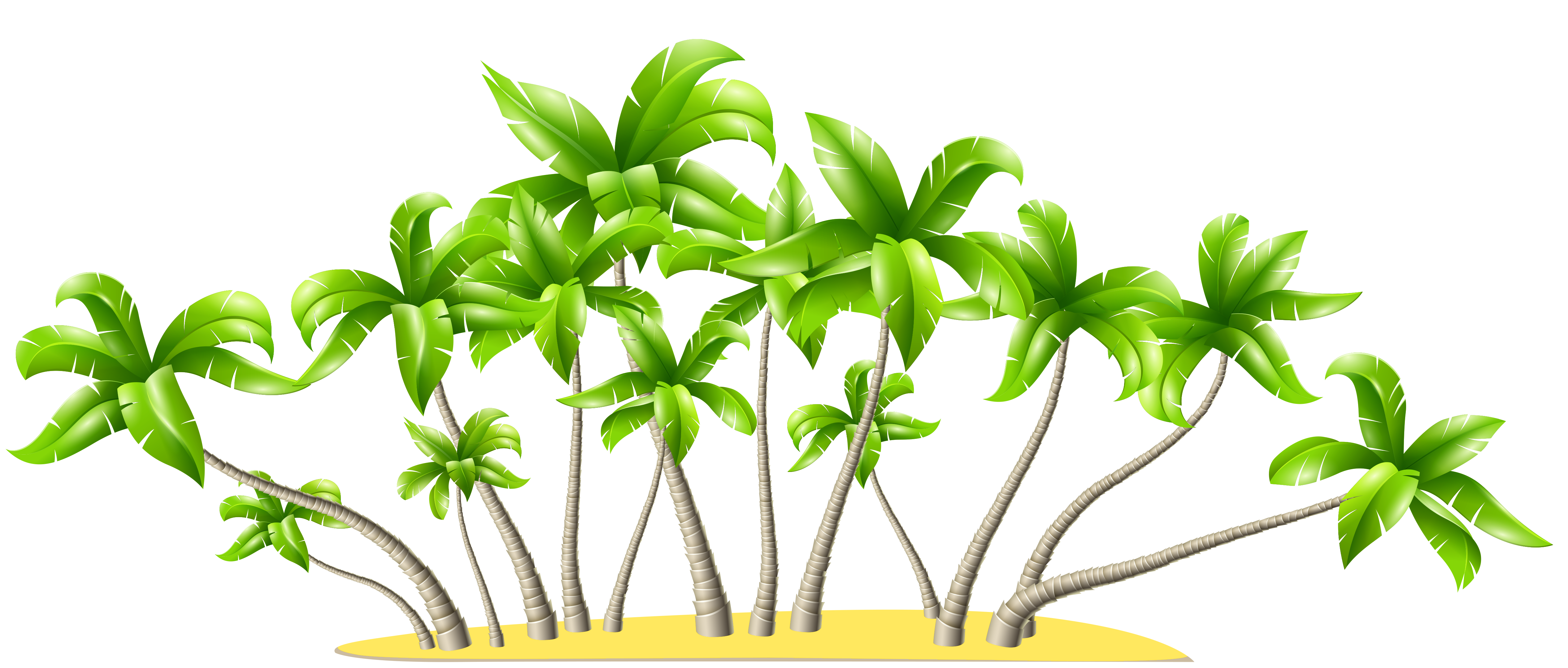 Summer tree png. Palm trees clipart gallery