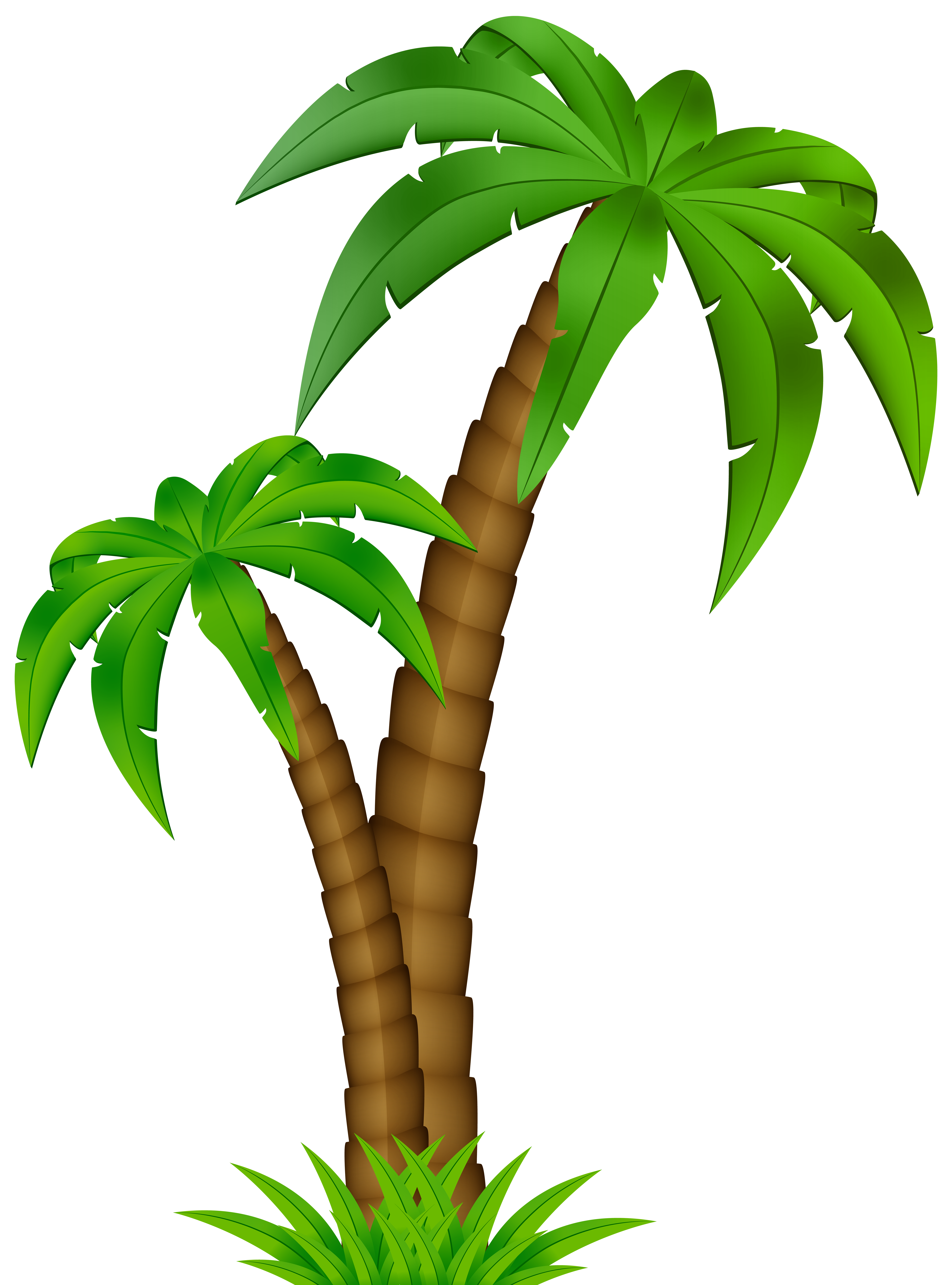 Palm clip art image. Tree cartoon png black and white