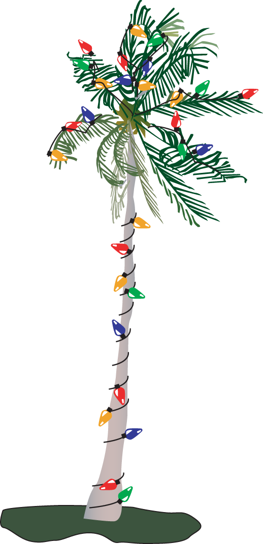 Palm tree christmas tree png. Collection of with