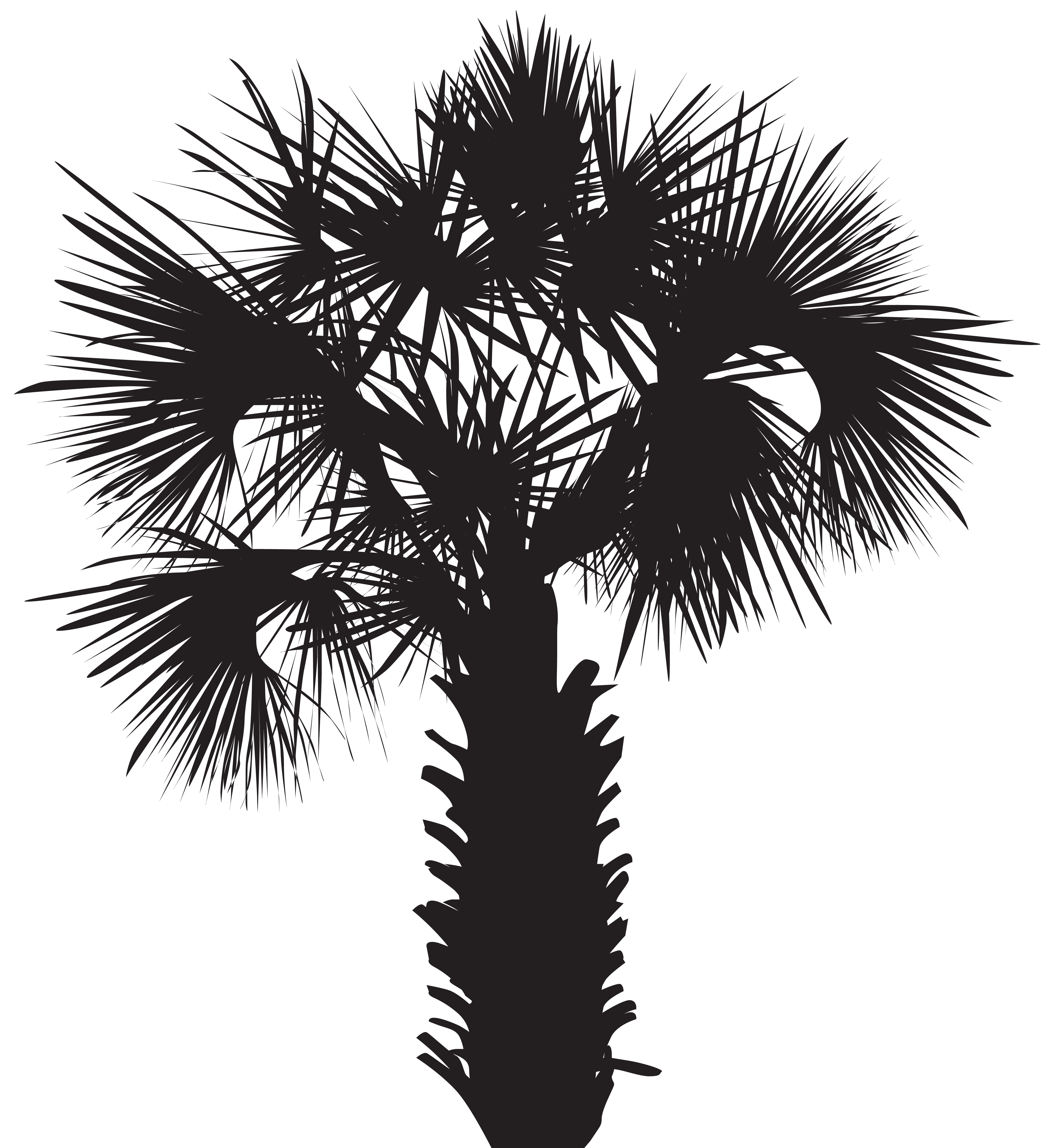 Palm tree clipart black and white png. Silhouette clip art image