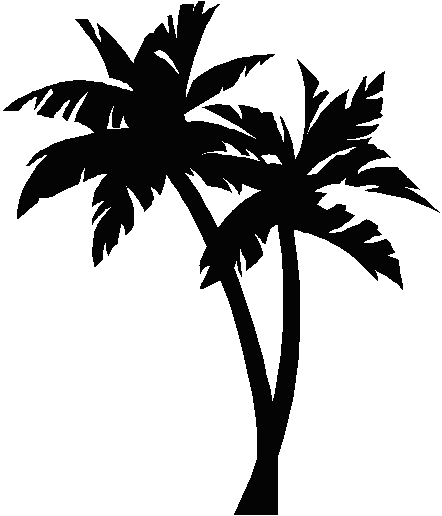 Palm tree clipart black and white png. Collection of high