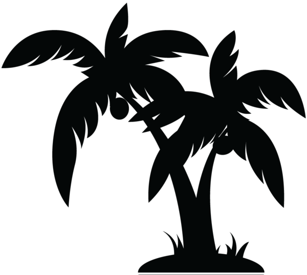 Palm tree clipart black and white png. Image vector simple lines