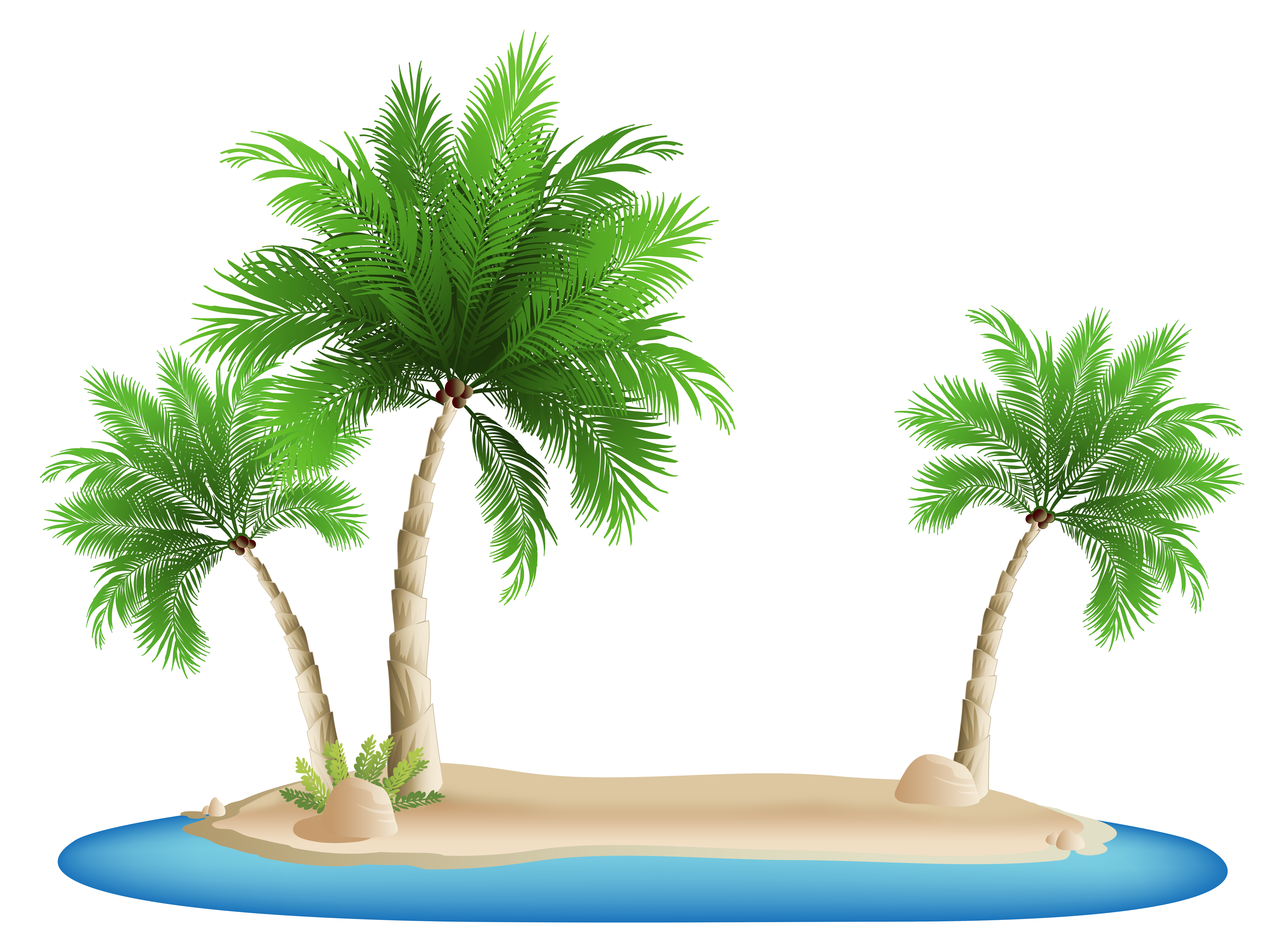 Palm tress png. Trees island clipart image