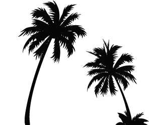 Palm tree black and white png. Emoji clipart images gallery