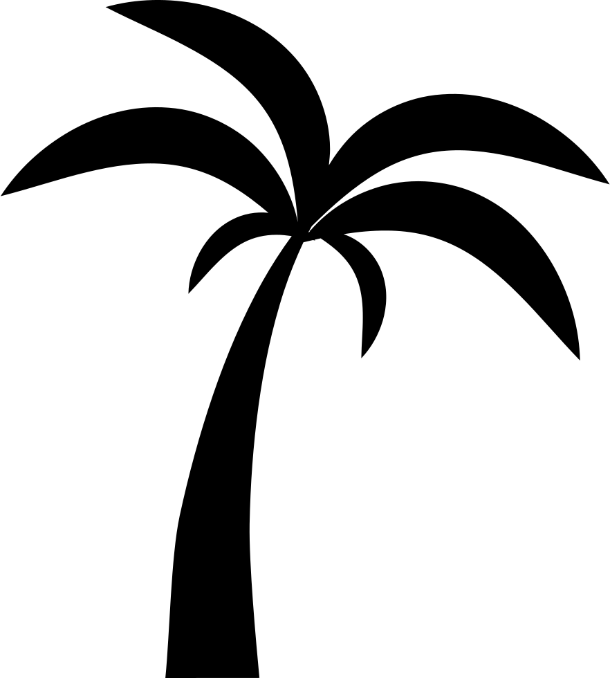 White palm tree png. Svg icon free download