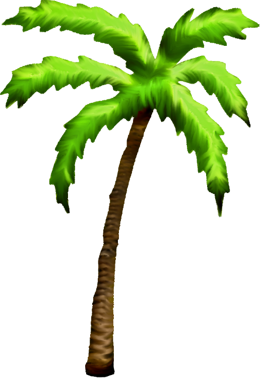 Palm tree png cartoon. Available in different size