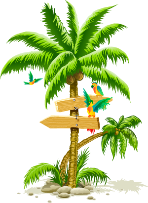 Palm tree png clip art. Image cartoon birds beach