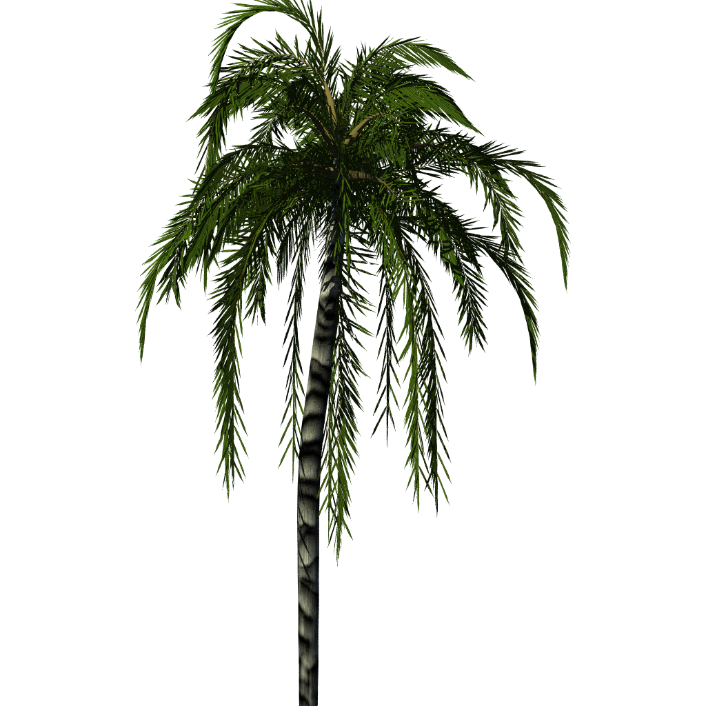 Palm tree png render. Greenhouse blender for architecture