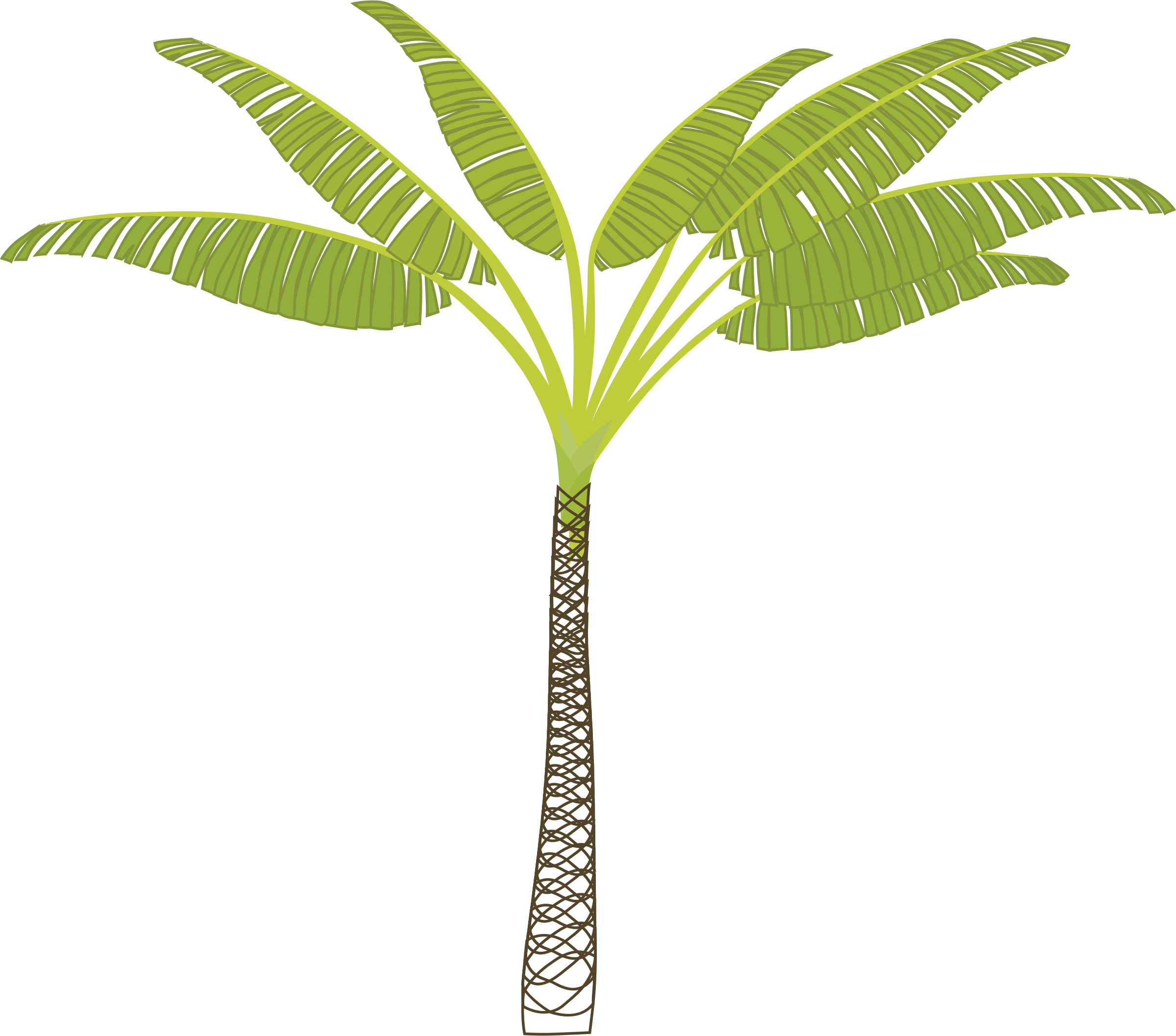 Palm tree png vector. Icons free and downloads