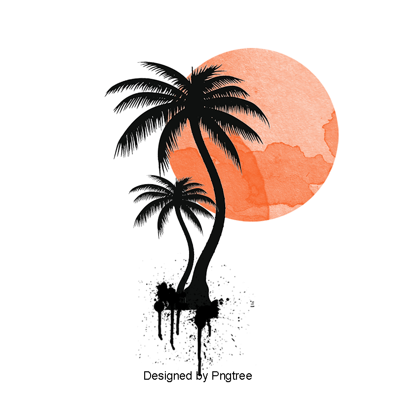 Palm tree sun png. Illustration of trees vector