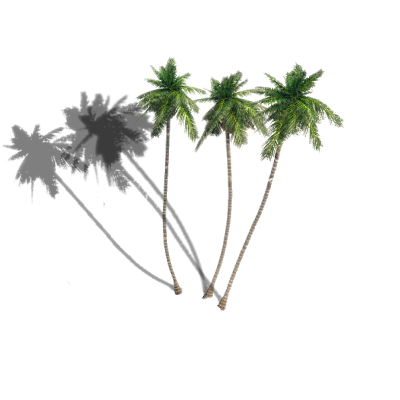 Palm tree shadow png. Dundjinni mapping software forums