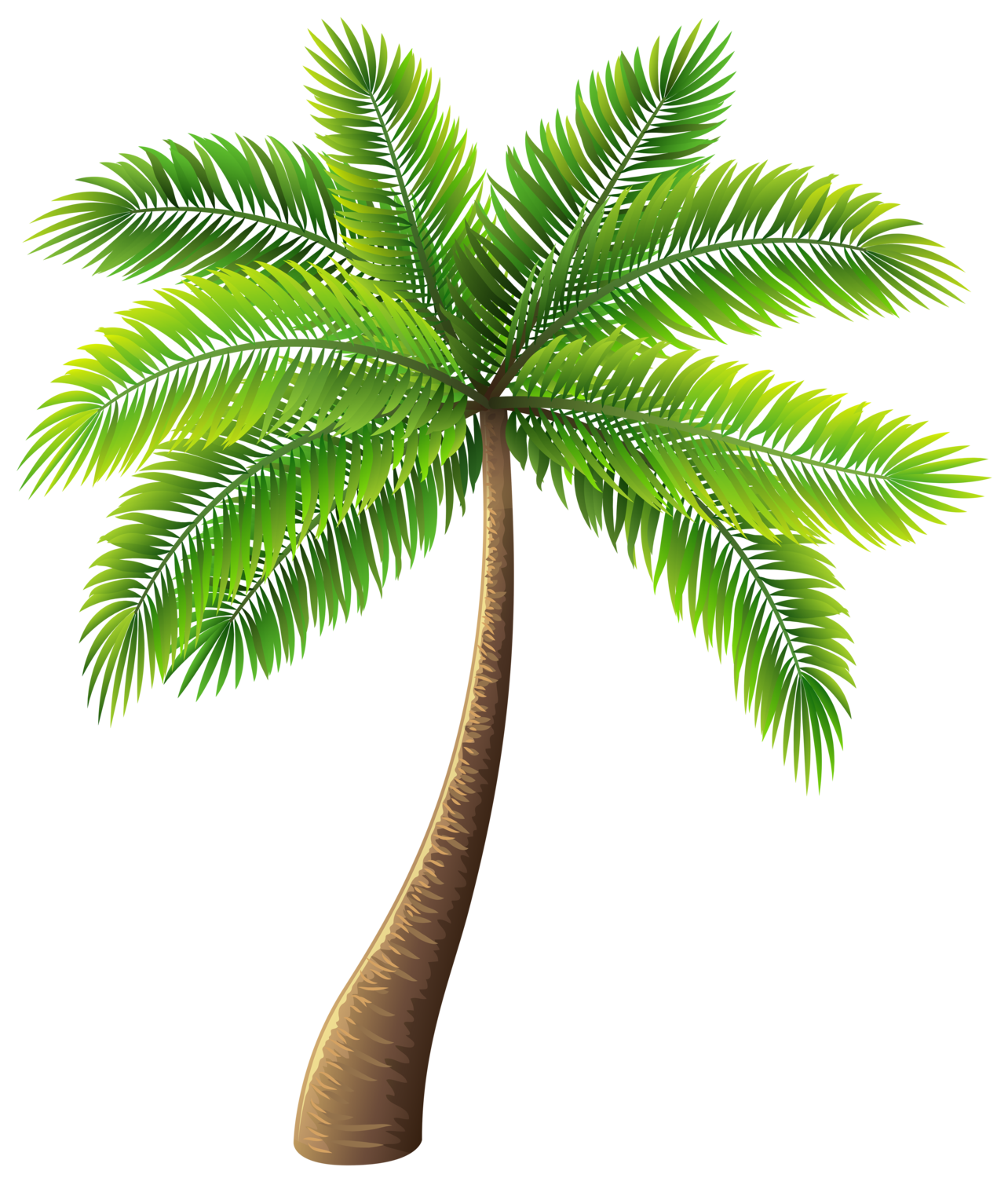 Palm leaf png. Tree clip art