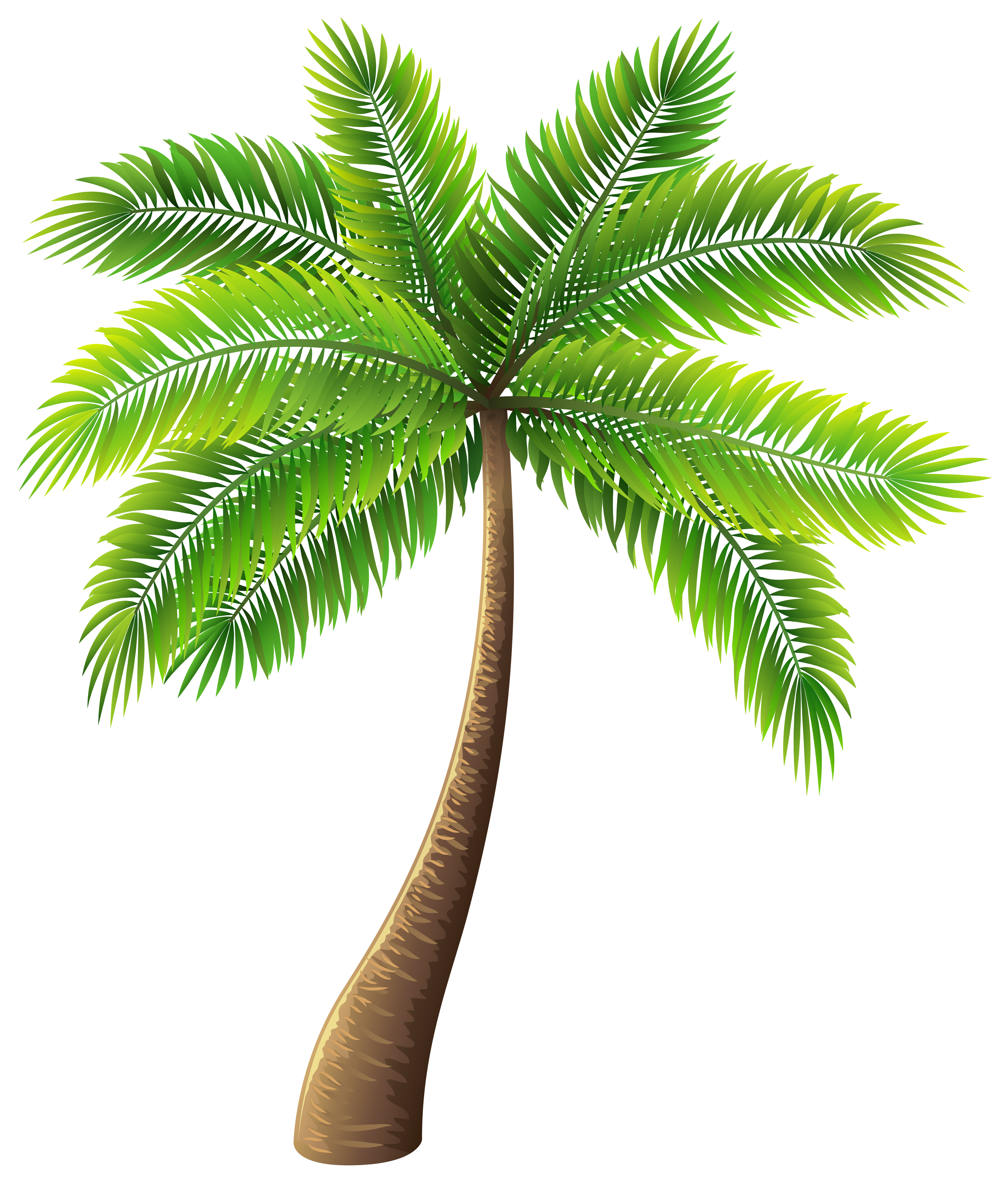 Palm tree vector png. Clip art web clipart