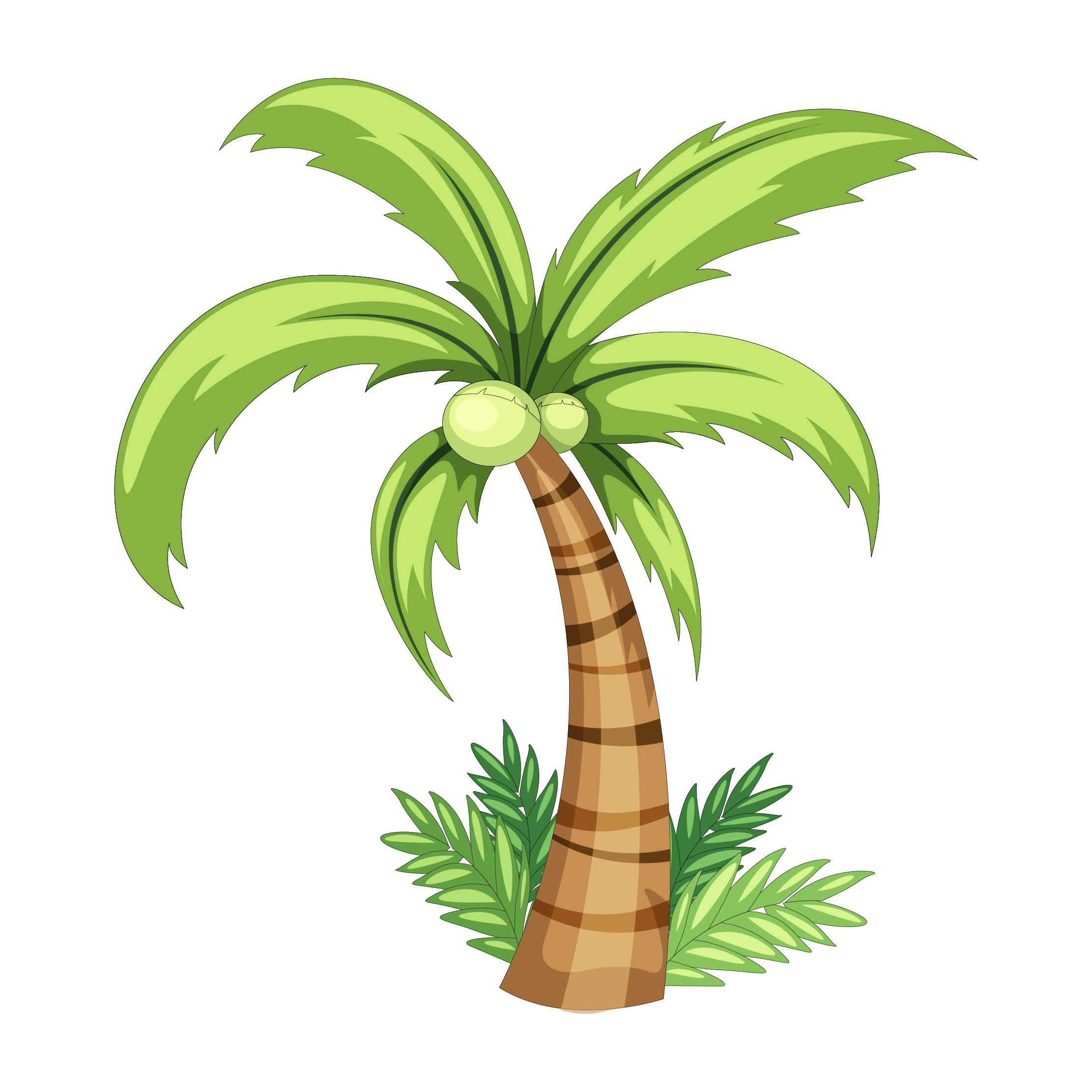 Palm tree watercolor png. Coconut drawing clip art