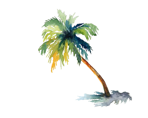 Palm tree watercolor png. We heart it transparent