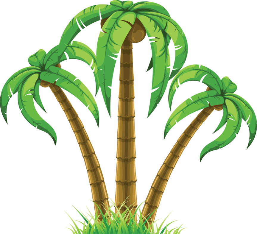 Palm Trees Vector Transparent Png Clipart Free Download Ya Webdesign