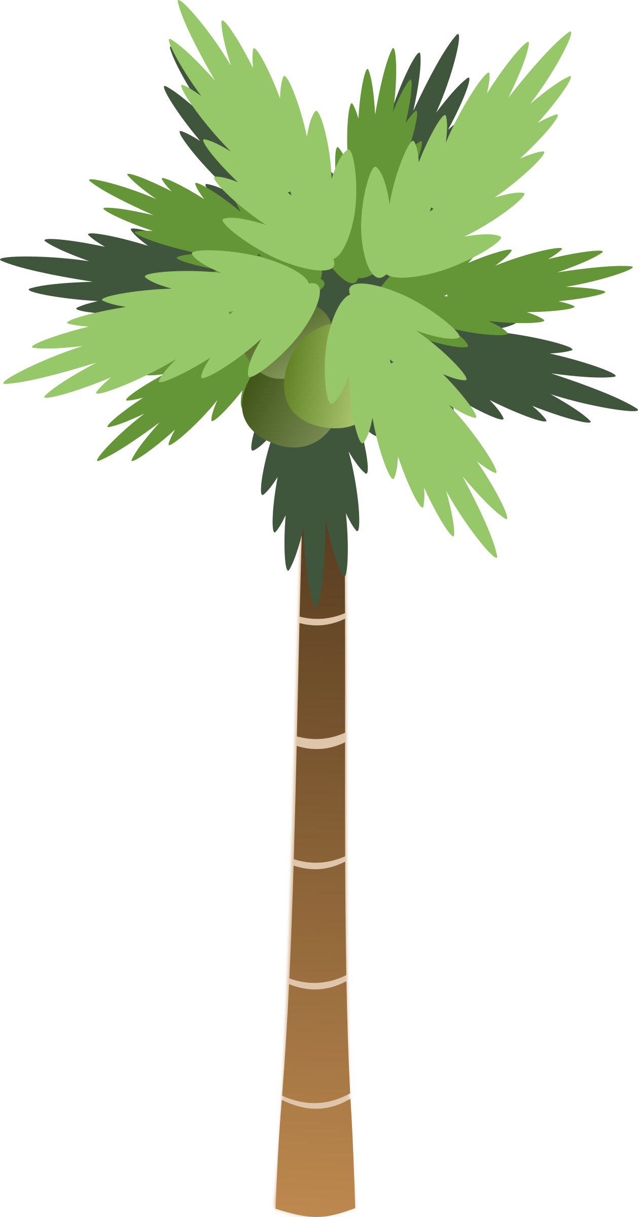 Palm trees vector png. Clipart tree