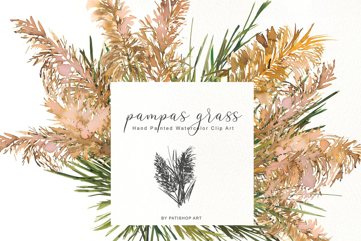 Pampas. Watercolor grass clipart set