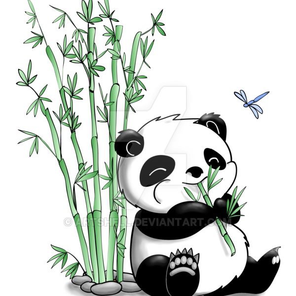 Panda drawing png. How to draw a