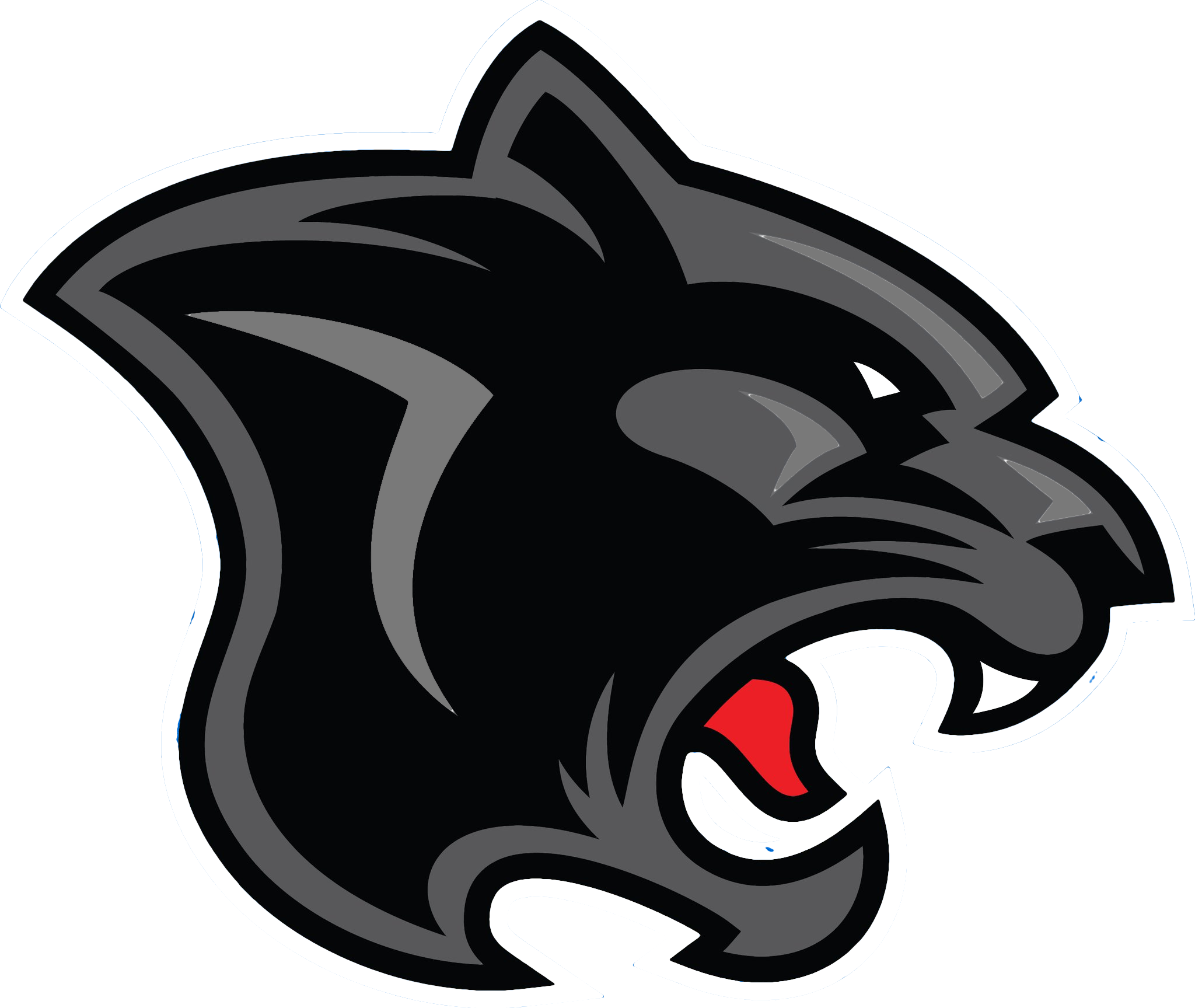 Black panther head png. Free transparent images download