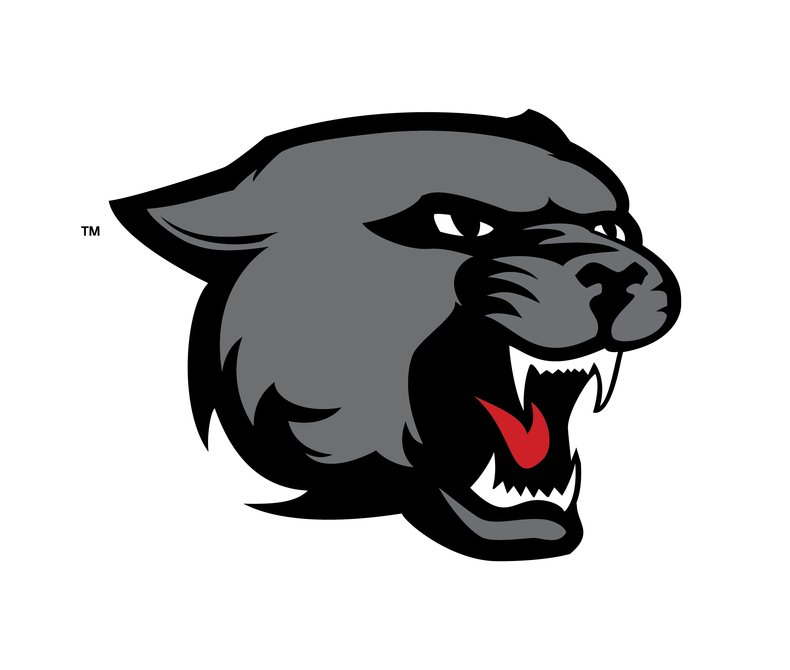 Panther vector png. Spirit files west high