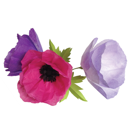 Paper flower png. Get crafty with simple