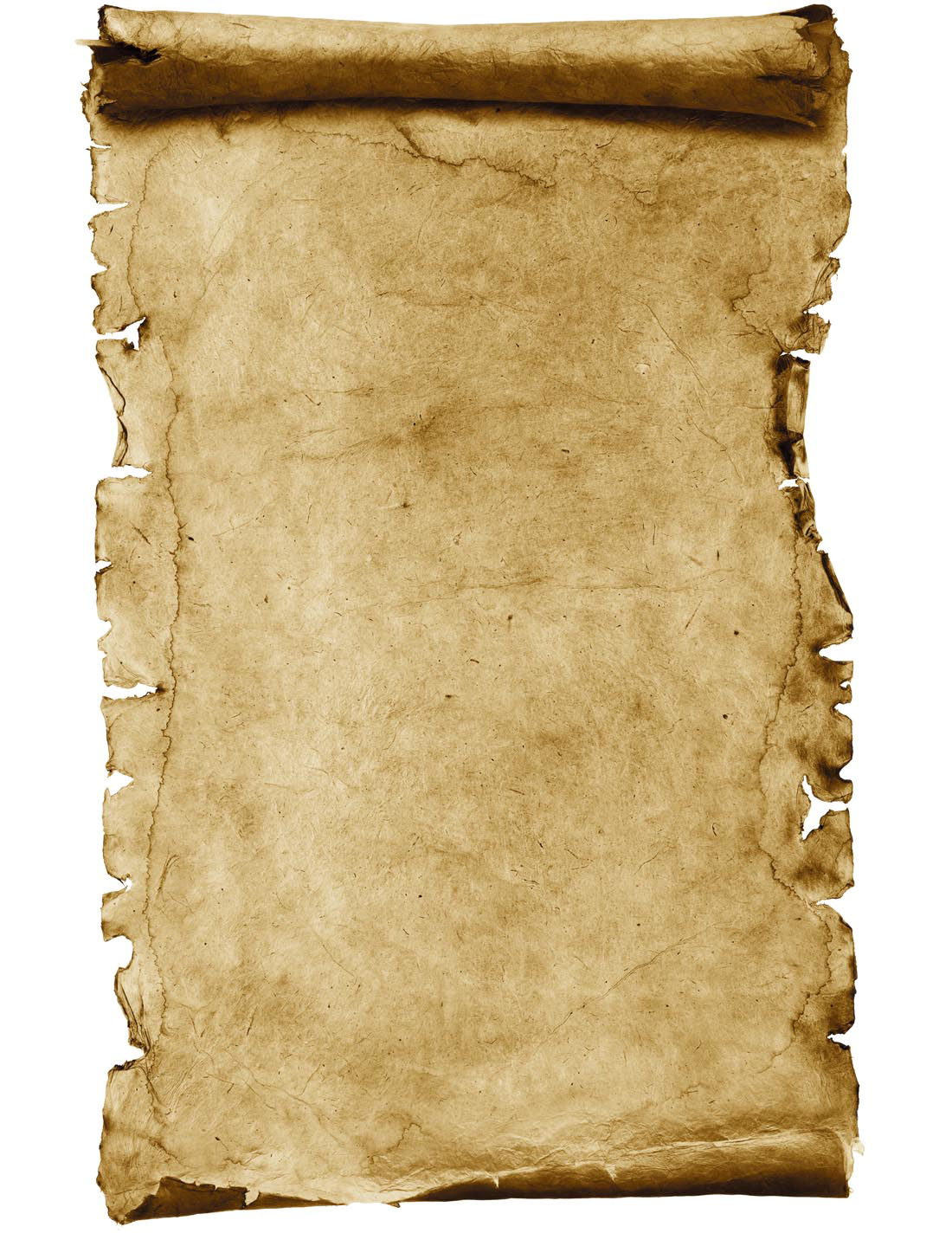 Parchment scroll png. Paper stock photography kraft
